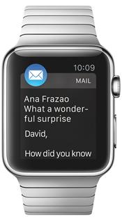 A fancy Apple Watch